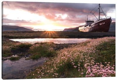 Flower Path Canvas Art Print