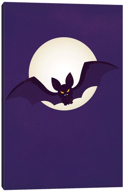 Flying Stealthily Through The Night Canvas Art Print