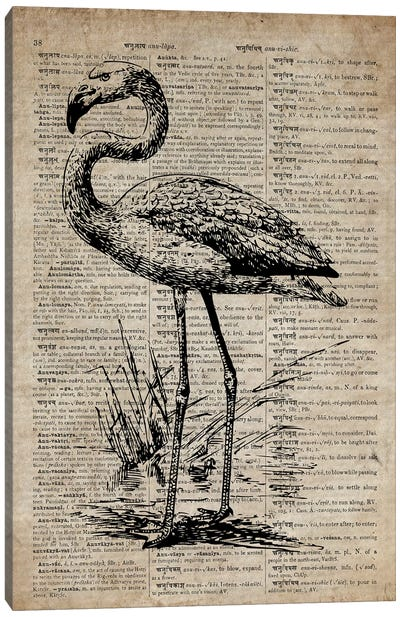 Flamingo Etching Print III On Old Dictionary Paper Canvas Art Print