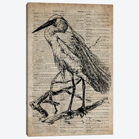 Heron Etching Print XI On Old Dictionary Paper Canvas Print #FHC47} by FisherCraft Canvas Artwork