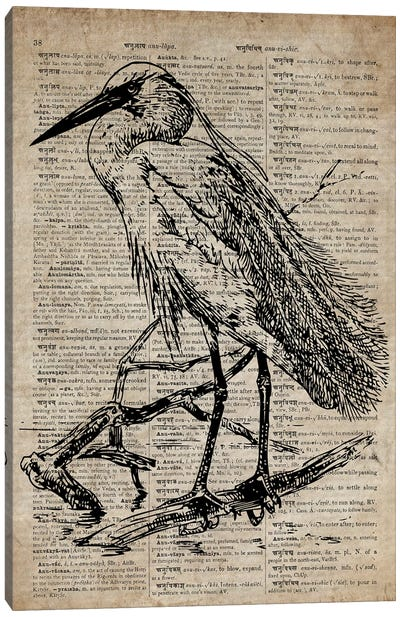 Heron Etching Print XI On Old Dictionary Paper Canvas Art Print