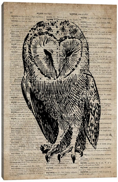 Owl Etching Print V On Old Dictionary Paper Canvas Art Print