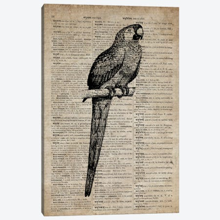 Parrot Etching Print VII On Old Dictionary Paper Canvas Print #FHC64} by FisherCraft Canvas Artwork