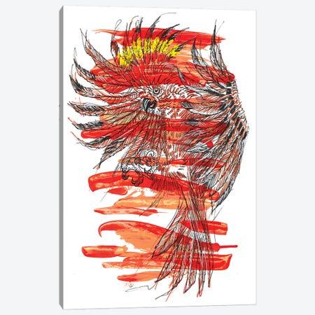 Aves Canvas Print #FJB114} by Frank Banda Canvas Print