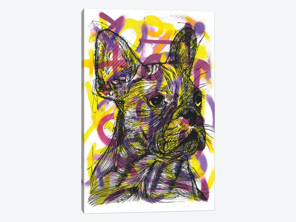 Bulldog Francés (French Bulldog) by Frank Banda 1-piece Canvas Art Print