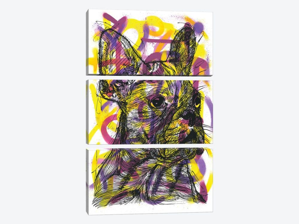 Bulldog Francés (French Bulldog) by Frank Banda 3-piece Canvas Art Print
