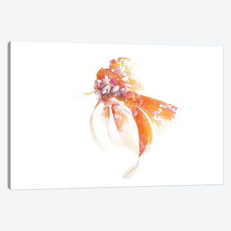 Koi I Canvas Print #FJB130} by Frank Banda Canvas Artwork