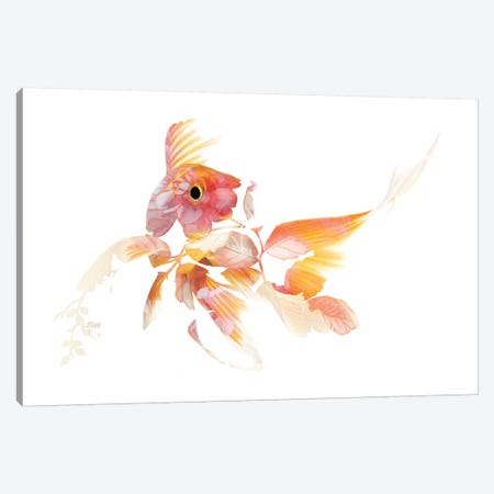 Koi II Canvas Print #FJB131} by Frank Banda Canvas Art