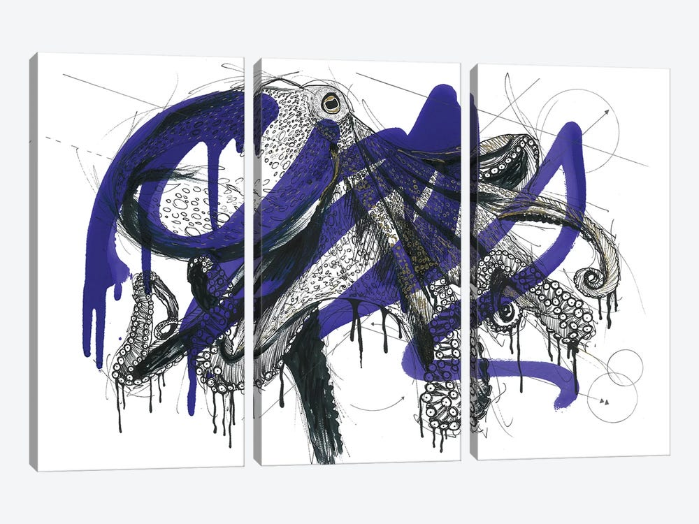 Octopus Reef by Frank Banda 3-piece Canvas Print