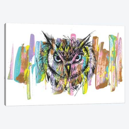 Owl Canvas Print #FJB138} by Frank Banda Canvas Wall Art