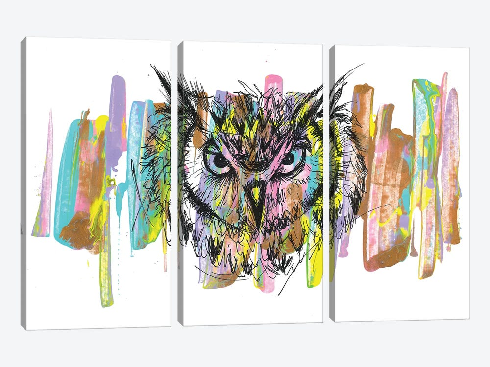 Owl by Frank Banda 3-piece Canvas Art Print