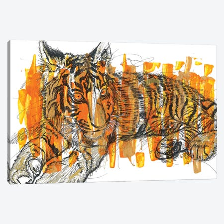 Tigre Canvas Print #FJB141} by Frank Banda Canvas Art Print