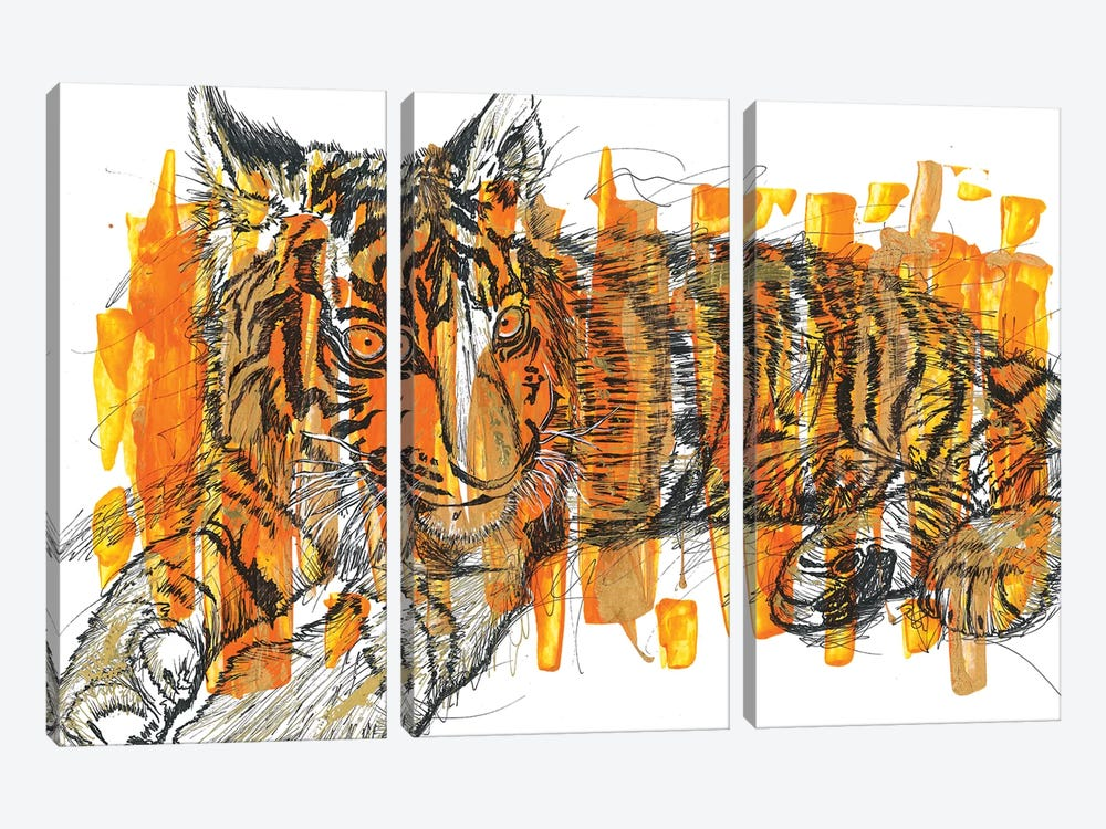 Tigre by Frank Banda 3-piece Canvas Art Print