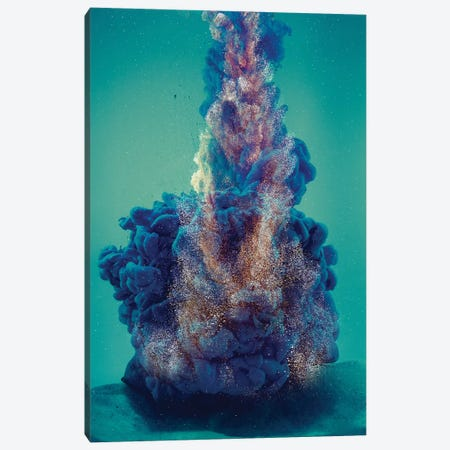 Deep In The Ocean Canvas Print #FJB32} by Frank Banda Canvas Artwork