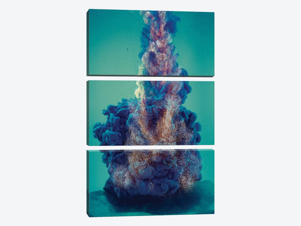 Deep In The Ocean by Frank Banda 3-piece Canvas Art Print