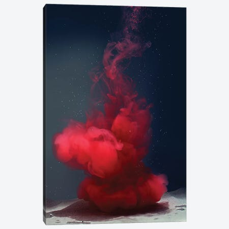 Medusa Rossa Canvas Print #FJB66} by Frank Banda Canvas Artwork