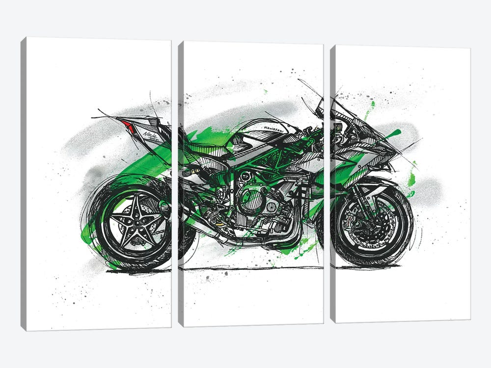 Ninja H2R by Frank Banda 3-piece Canvas Artwork