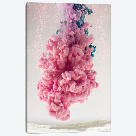 Pink Coral Canvas Print #FJB78} by Frank Banda Canvas Art