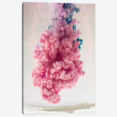Pink Coral Canvas Print #FJB78} by Frank Banda Canvas Art