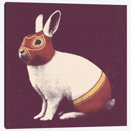 Rabbit Wrestler Square Canvas Print #FLB109} by Florent Bodart Canvas Art Print