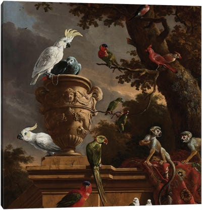 Birds and Monkeys Canvas Art Print