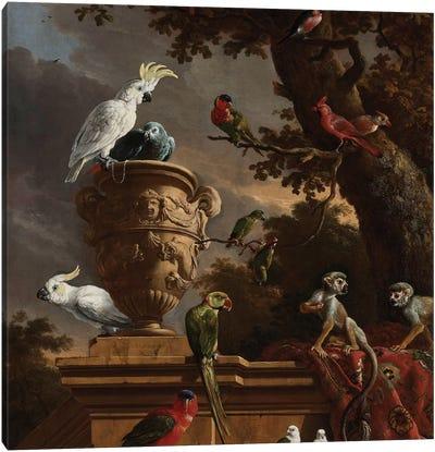 Birds and Monkeys Canvas Art Print