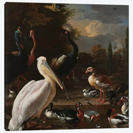 Birds in Pool Canvas Print #FLB120} by Florent Bodart Canvas Print