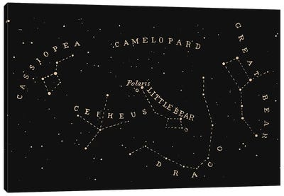 Constellation II Canvas Art Print