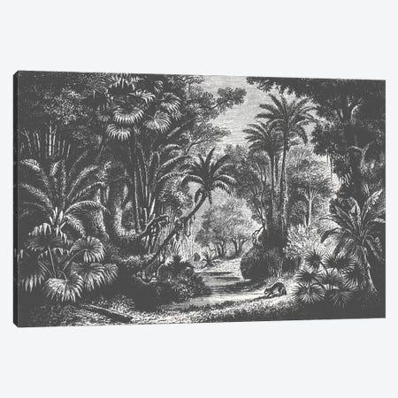 Indian Jungle Canvas Print #FLB135} by Florent Bodart Canvas Art Print