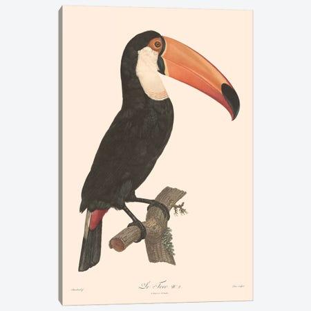 Le Toco Canvas Print #FLB136} by Florent Bodart Canvas Print