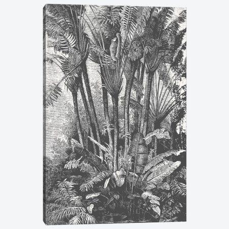 Palms in Water Canvas Print #FLB143} by Florent Bodart Art Print