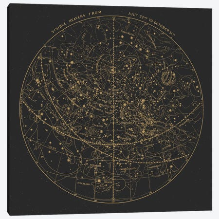 Visible Heavens On Dark Canvas Print #FLB158} by Florent Bodart Canvas Artwork