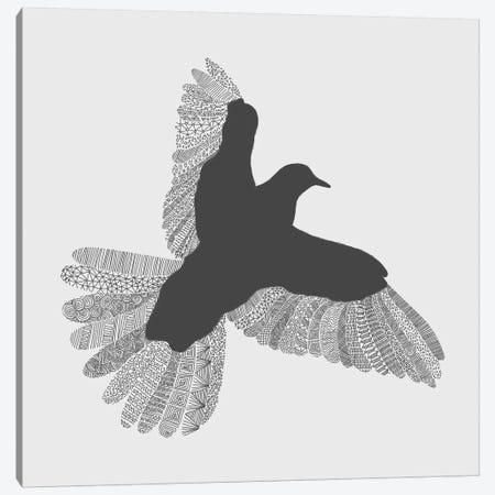 Bird on Grey Canvas Print #FLB15} by Florent Bodart Canvas Print