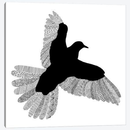 Bird on White Canvas Print #FLB16} by Florent Bodart Art Print