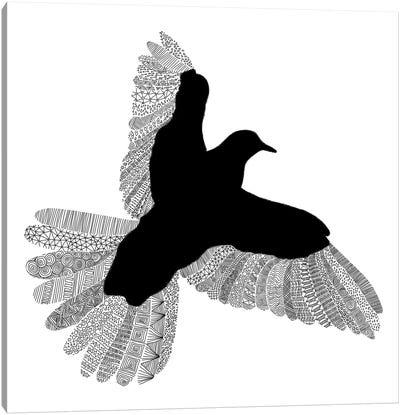 Bird on White Canvas Print #FLB16