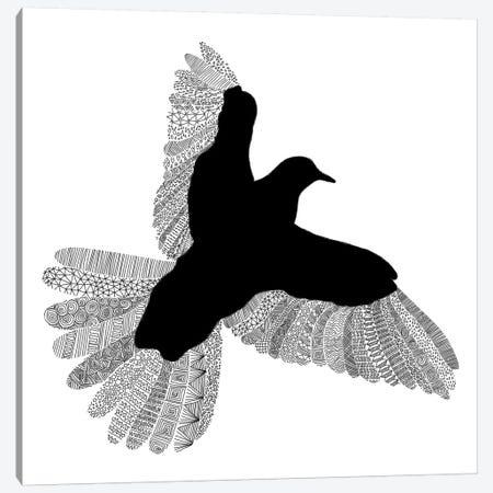 Bird on White Canvas Print #FLB16} by Florent Bodart Art Print