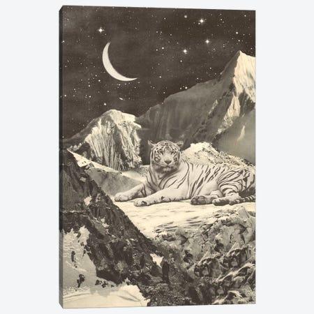 Giant White Tiger On Mountains Canvas Print #FLB182} by Florent Bodart Canvas Art Print