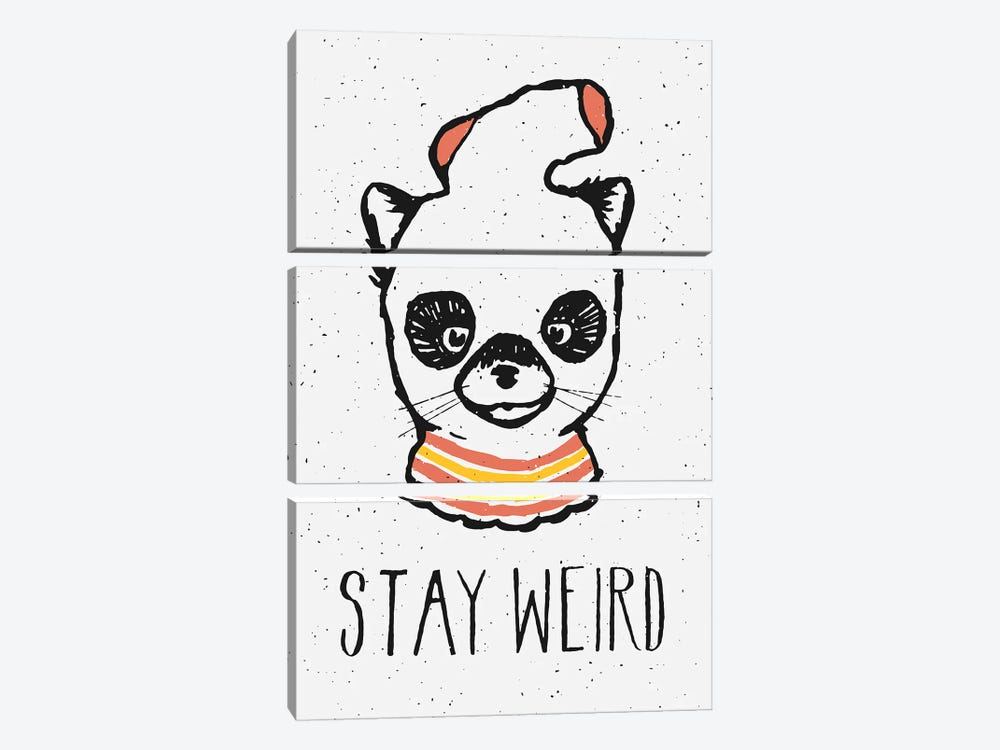 Stay Weird by Florent Bodart 3-piece Canvas Artwork