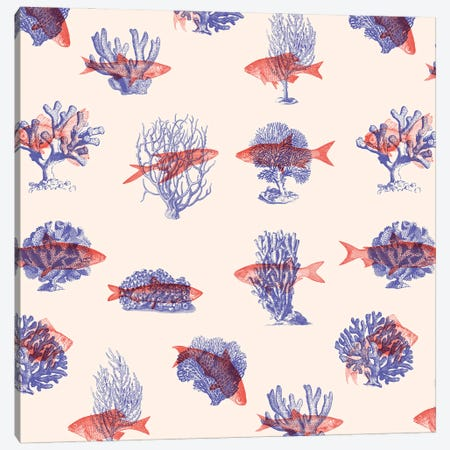 Where the Belong - Fish Canvas Print #FLB193} by Florent Bodart Canvas Wall Art