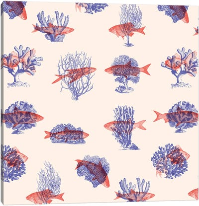 Where the Belong - Fish Canvas Art Print
