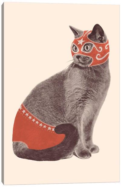 Cat Wrestler Canvas Art Print