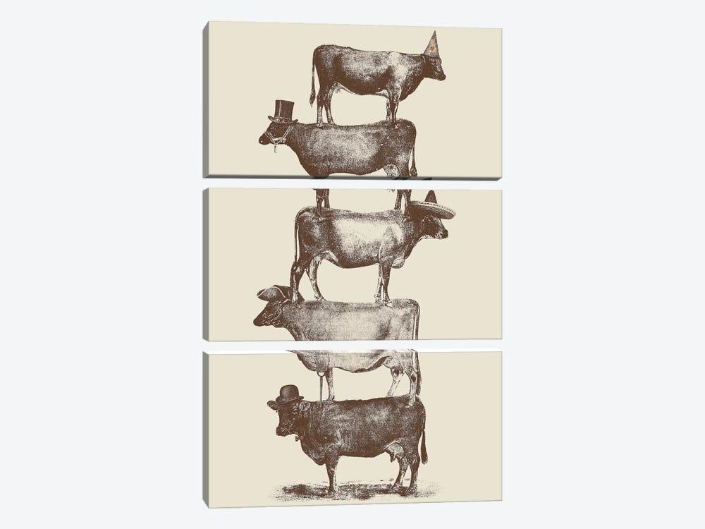 Cow Cow Nuts by Florent Bodart 3-piece Canvas Artwork