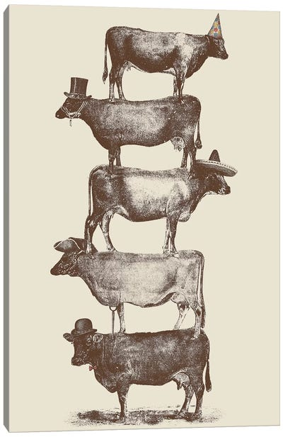 Cow Cow Nuts Canvas Print #FLB20