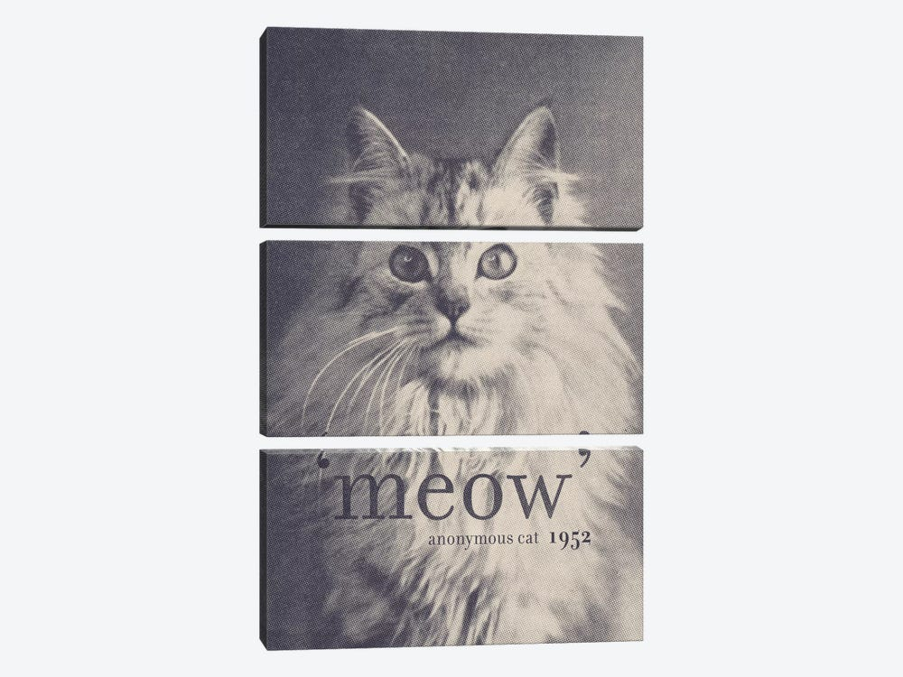 Famous Quotes (Cat) by Florent Bodart 3-piece Canvas Print