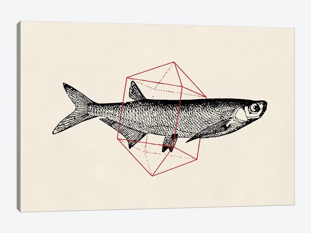 Fish In Geometrics II by Florent Bodart 1-piece Art Print