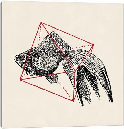 Fish In Geometrics III Canvas Print #FLB37