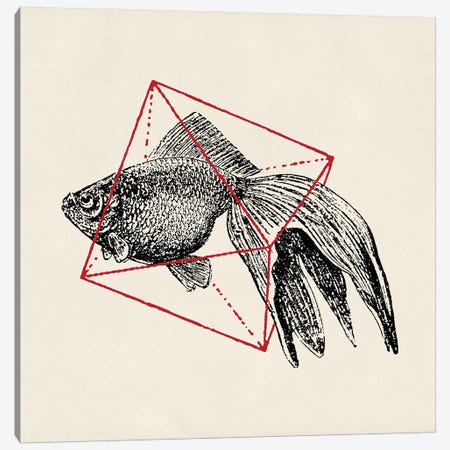 Fish In Geometrics III Canvas Print #FLB37} by Florent Bodart Art Print