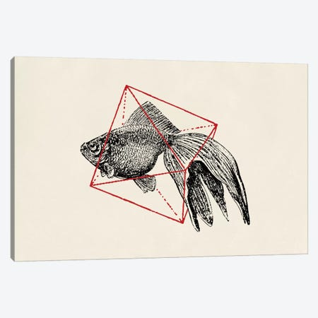 Fish In Geometrics III (wide) Canvas Print #FLB38} by Florent Bodart Canvas Art