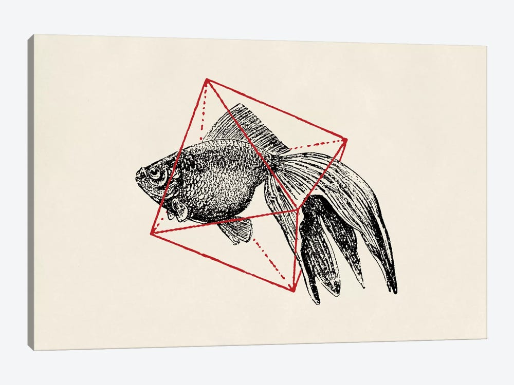 Fish In Geometrics III (wide) by Florent Bodart 1-piece Canvas Art Print