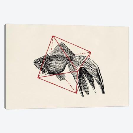 Fish In Geometrics III (wide) Canvas Print #FLB38} by Florent Bodart Canvas Art